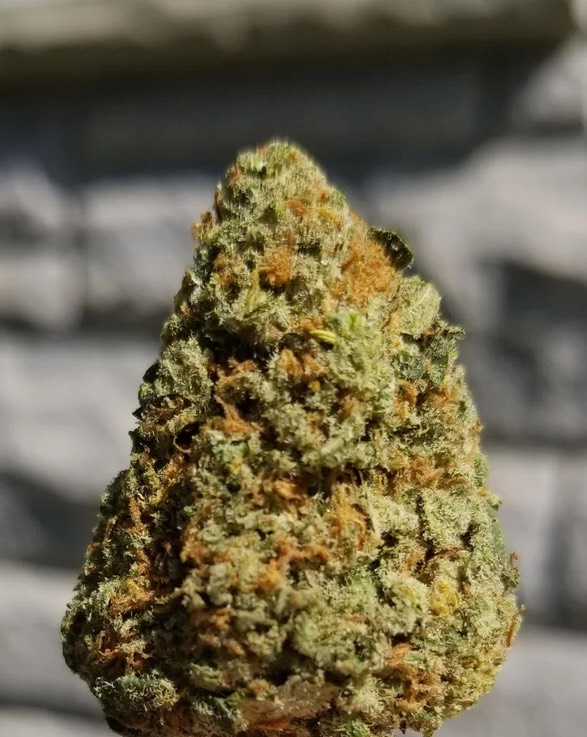 super silver haze strain review